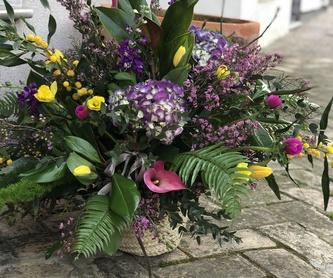 Cesta con flor preservada: Productos de Floristería Miriam