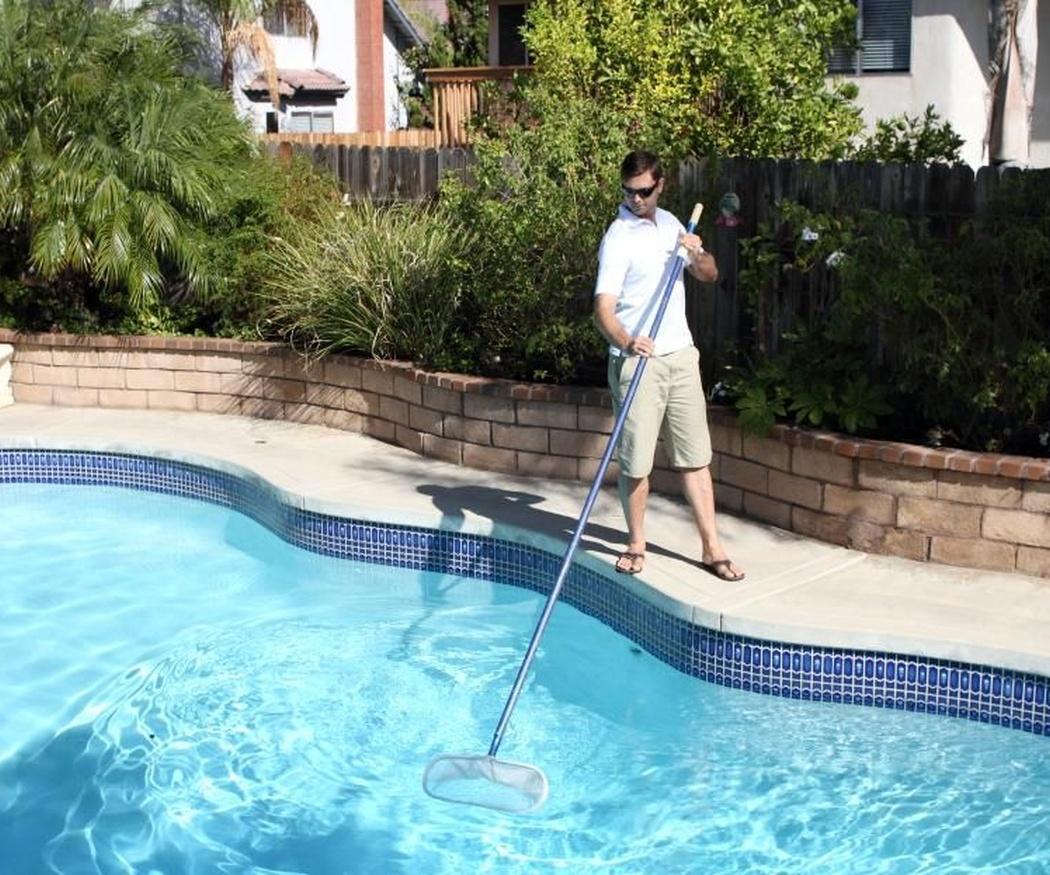 Consejos para luchar contra las algas en la piscina