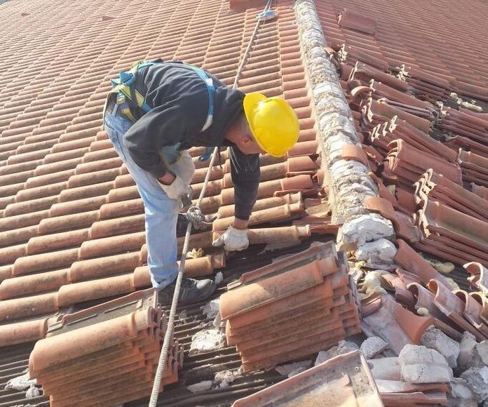 Recuperación Teja y acondicionamiento tejados!!