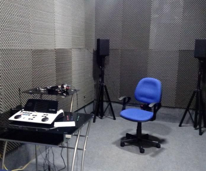 Estudio del oído: Productos y servicios de Centro Auditivo Castro