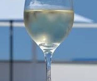 """Vinos blancos, D.O """"Rueda"""""""