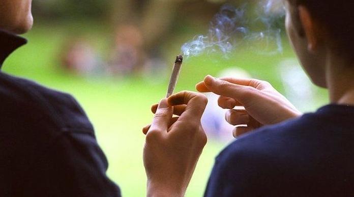 Sube el consumo de cannabis en España, se estabiliza el de tabaco y baja ligeramente el de alcohol