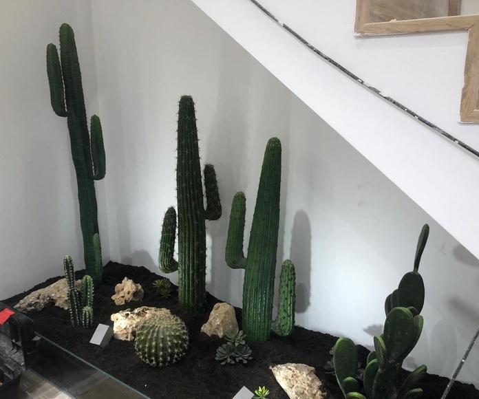 Jardín artificial peluquería Carche