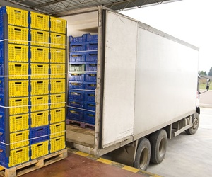 Transporte de mercancías perecederas por carretera