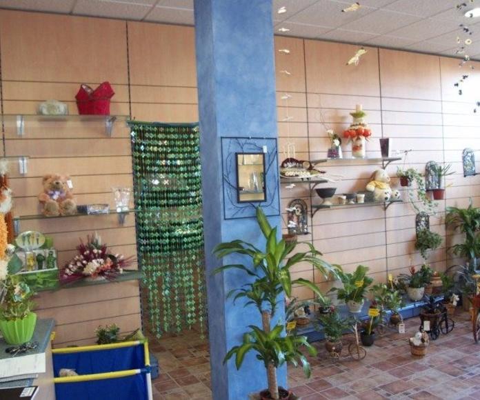 TIENDAS DE REGALO Y FLORISTERIA: Instalaciones de Europea de Estanterías