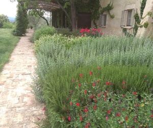 Mantenimiento de jardines en Girona