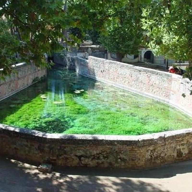 Manantial de Fuente Grande en Alfacar (Granada)
