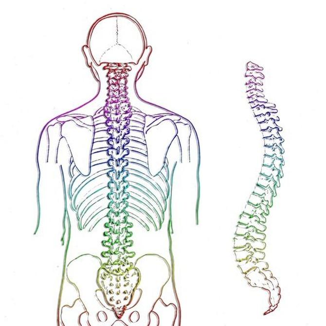 ¿Qué hacer para disminuir el riesgo de padecer dolores de espalda?