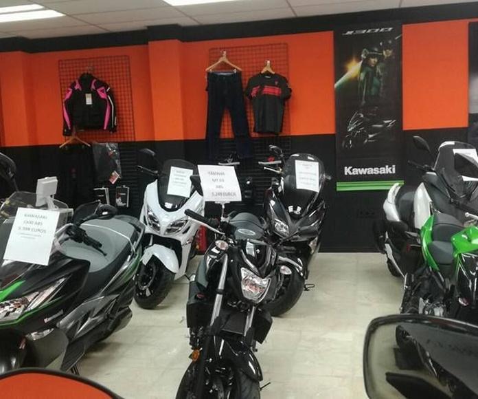 Venta accesorios y boutique : Servicios de MV Racing
