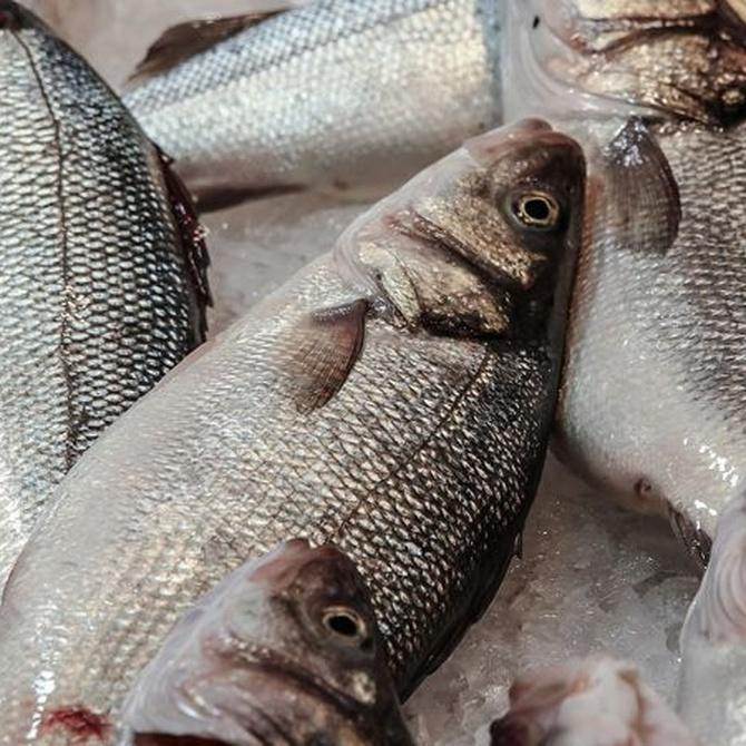 Medidas higiénicas para el consumo de pescado