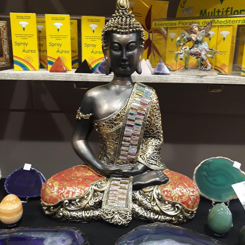 Buda: Servicios de Centro M.A.