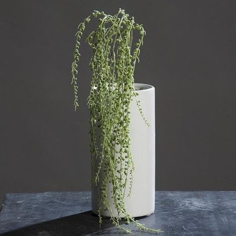 PLANTA COLGANTE GRASA. COLOR:VERDE REF.:60010162/GR PRECIO: 5,10 €