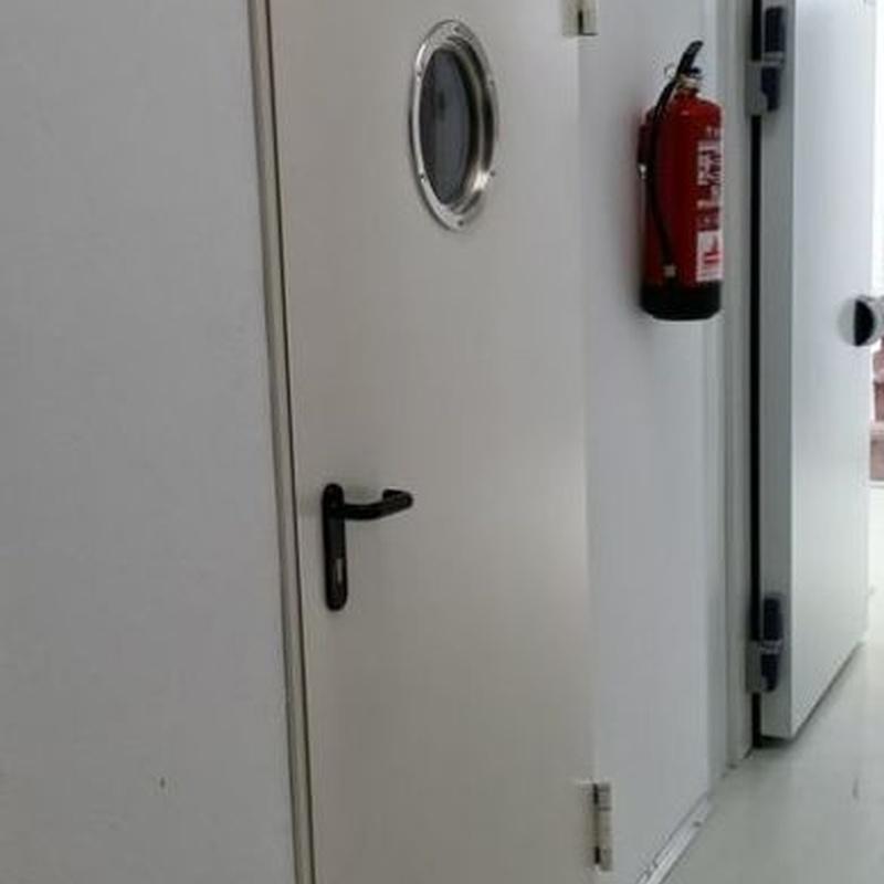 Puertas cortafuegos: Productos de Veinser Automatismos