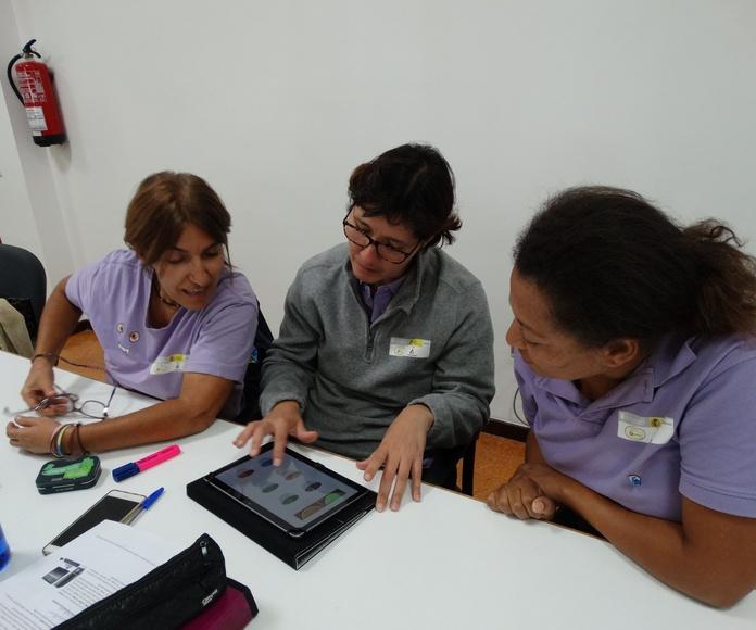 Entrenamiento de estrategias cognitivas: Proyectos y Servicios de Asociación Domitila