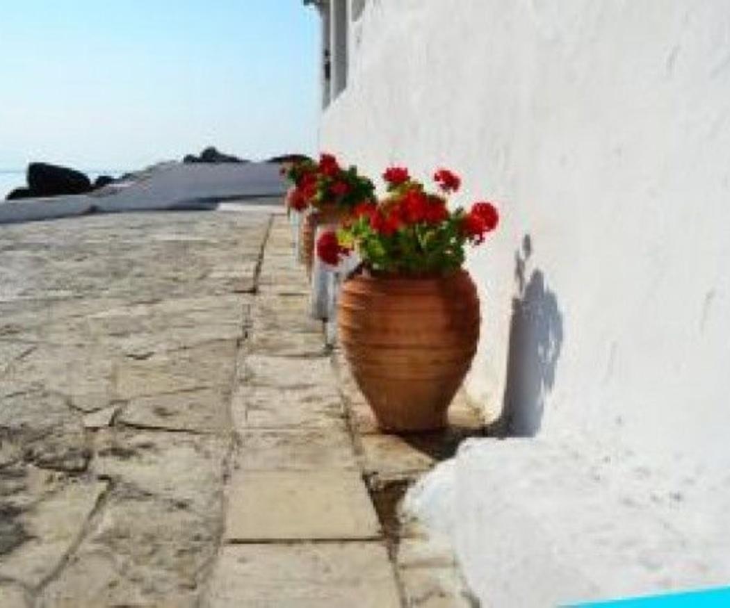 5 tipos de pavimentos para exteriores
