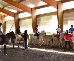 Clases de equitación en el Club Hípico Arbayún