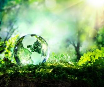 Recuperación de residuos industriales: Productos y servicios de Desguace Lorente Yecla