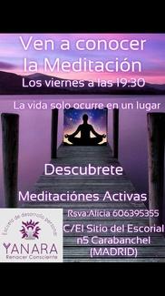 14 DE DICIEMBRE. VUELVEN LAS MEDITACIONES ACTIVAS
