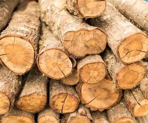 Almacén de madera en Fuerteventura