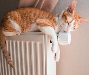 Calefacciones eficientes gracias a los radiadores