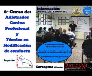 Seminarios y Cursos de formación Canina