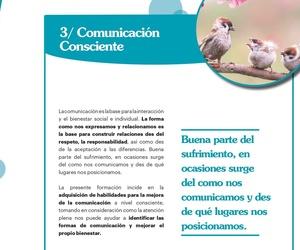 3. TALLER DE COMUNICACIÓN CONSCIENTE