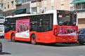 Autobús de nuestra empresa