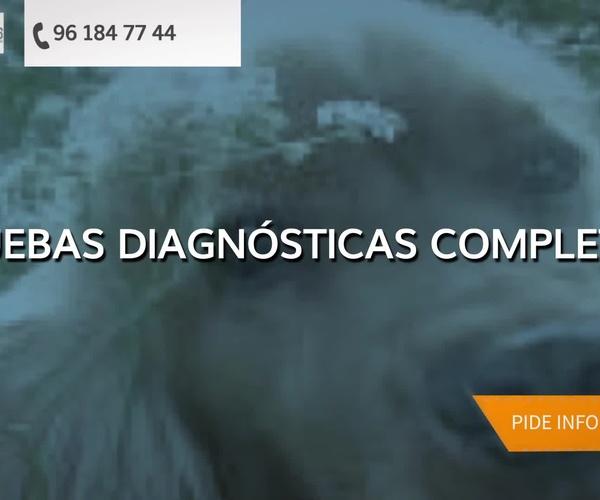 Veterinarios en Quart de Poblet | Clínica Veterinaria Els Peluts