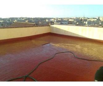 Impermeabilización de muros y soleras: Servicios de Teimsa