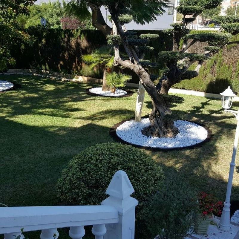 Diseño de jardines: Trabajos de Grun Garden