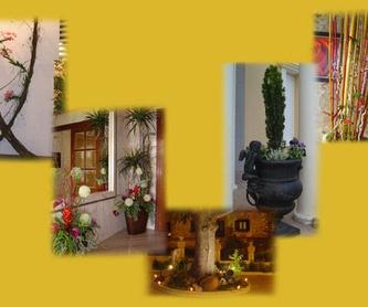 Decoración de iglesias : Catálogo de Floristería Mª Teresa