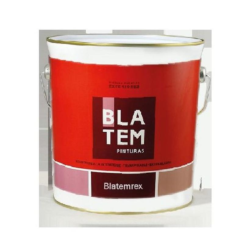 Blatemrex en almacén de pinturas en ciudad lineal.
