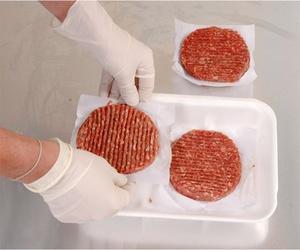 Venta de hamburguesas en Badajoz