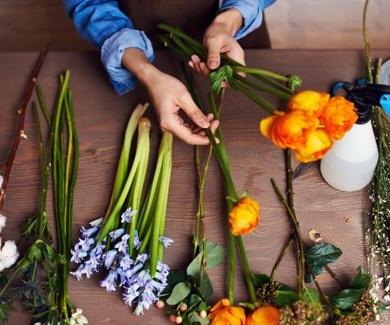 Flores de primera calidad del invernadero a tus manos - ProntoPro.es