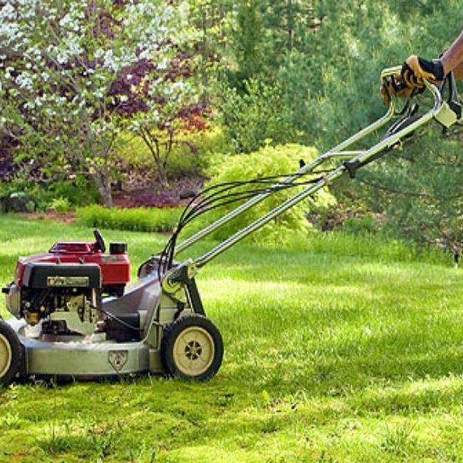 Consejos de jardinería en primavera