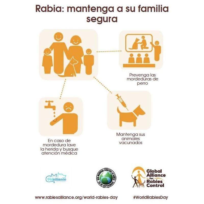 Vacunación: Servicios de Vetalliance Reus Clínica Veterinaria