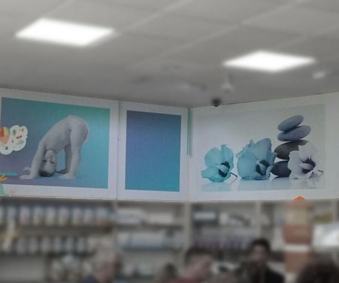 Especialistas en Diseño de Farmacias: Productos y Servicios de Display Cash & Carry