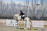 Concurso de saltos en el Hípico de Granada