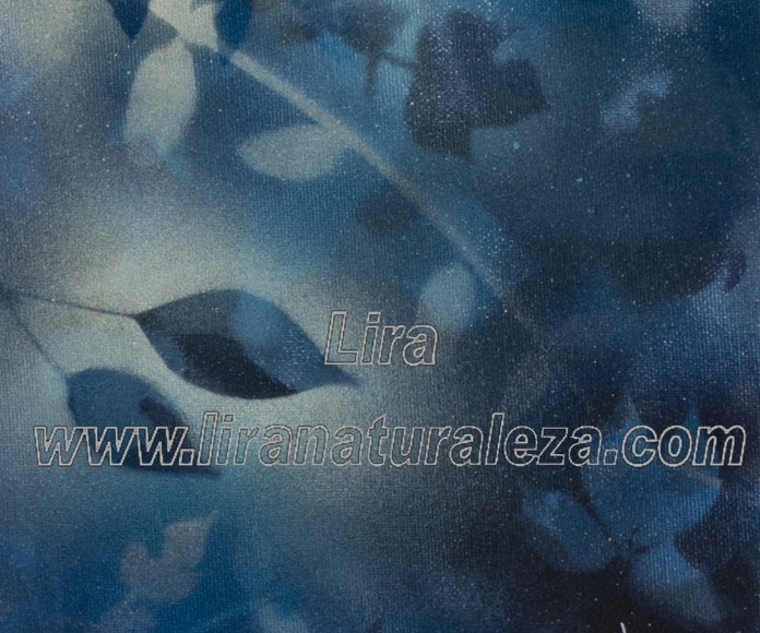 "Título: ""Azul"" Medidas 20x25cm Técnica mixta sobre lienzo"