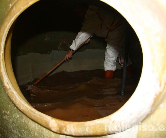 Limpieza y desinfección depósito de agua