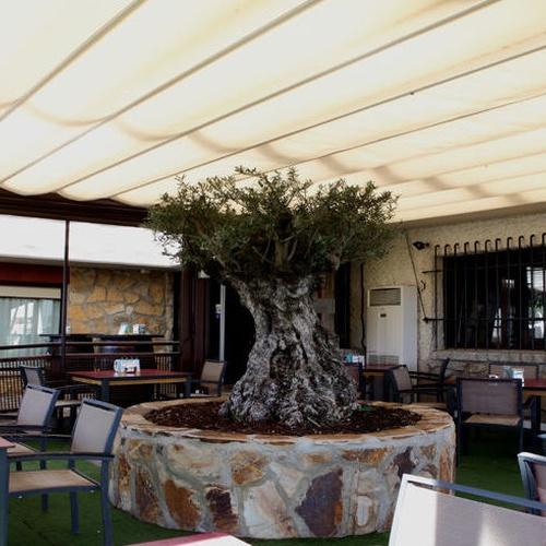 Restaurante para bodas en Alcobendas | Amarras
