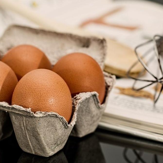 ¿Qué alimentos pueden contagiar la salmonella?