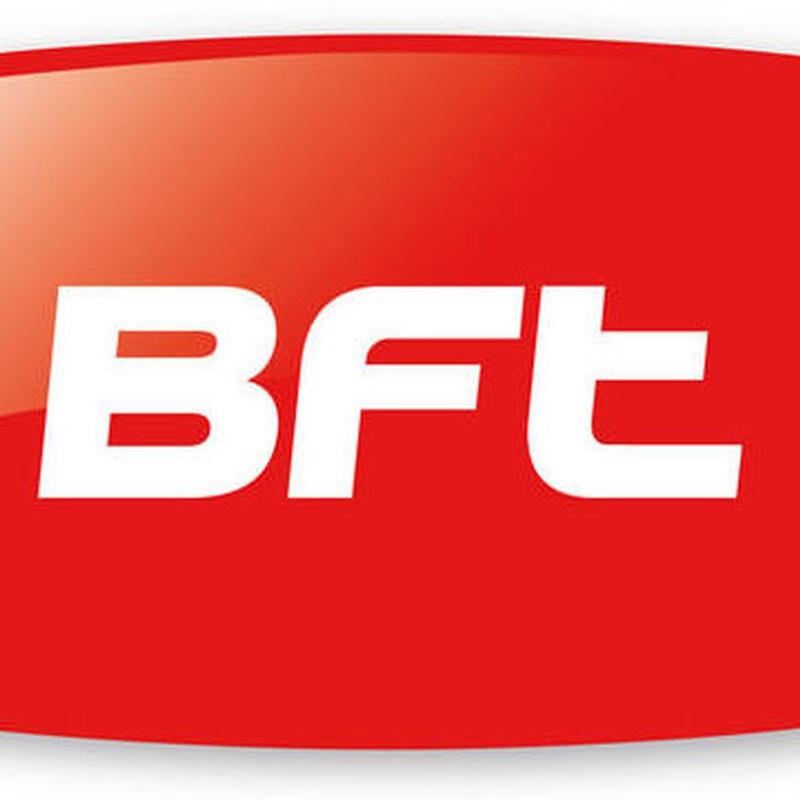 BFT: Productos de Veinser