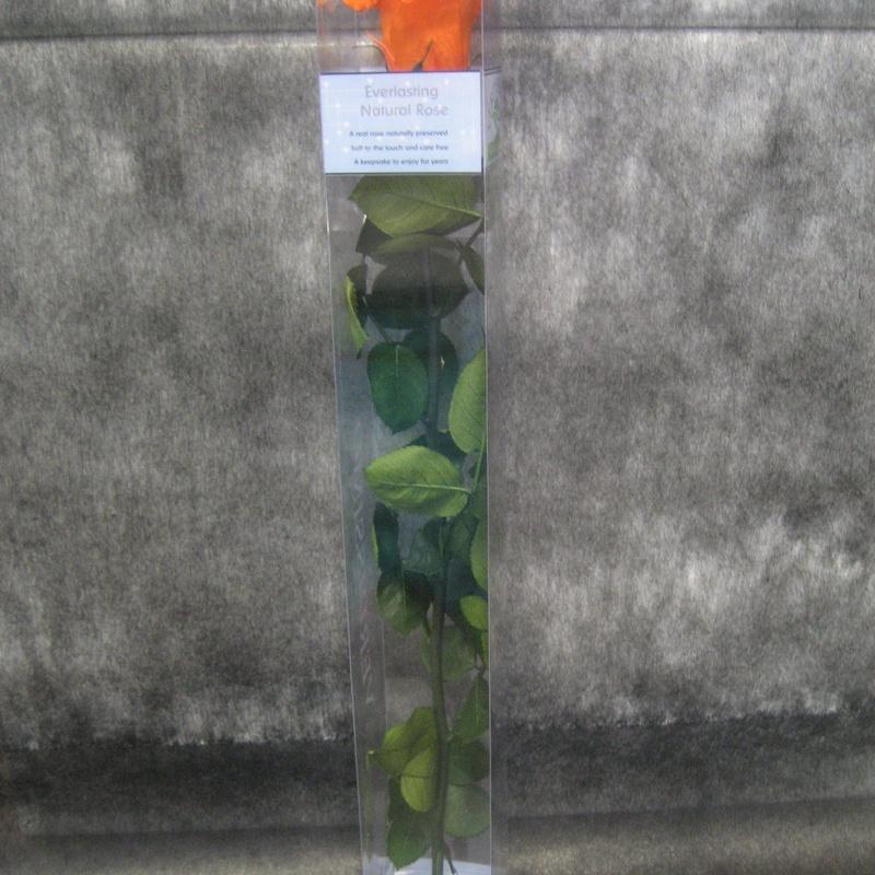 Rosa Preservada Naranja: Nuestras flores de Bouquet Flores y Plantas