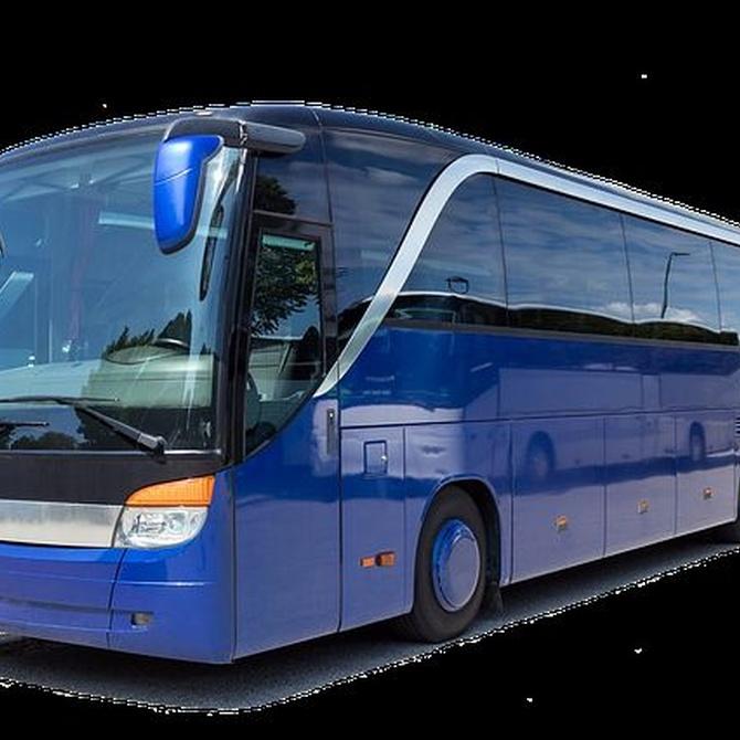 De fiesta en autobús
