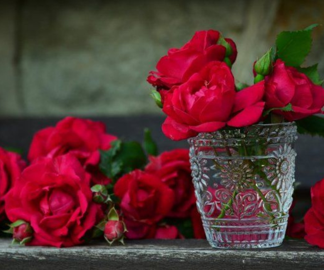 La rosa como símbolo del amor
