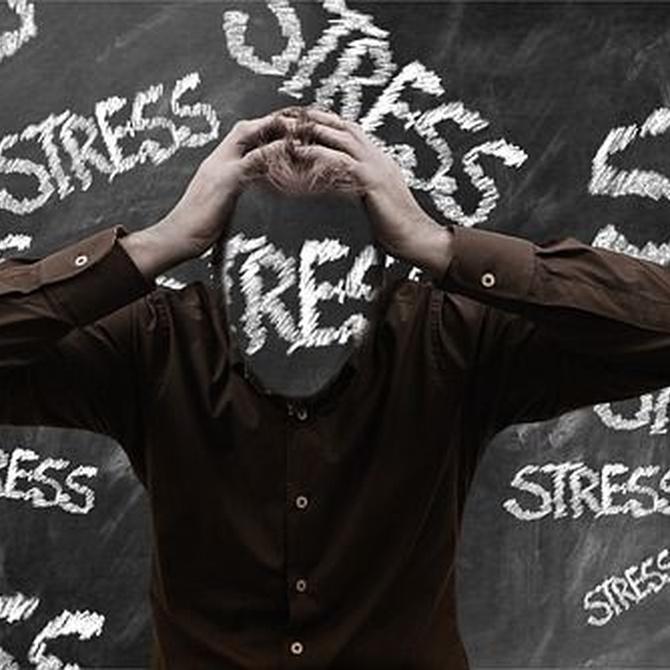 Las mudanzas son la tercera causa de estrés emocional. ¿Sabes cómo evitarlo?