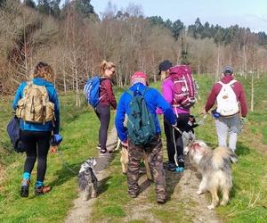 Actividades de senderismo con perros A Coruña