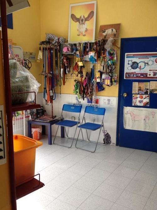Fotos de Veterinarios en Navas del Rey | Clínica Veterinaria Huellas
