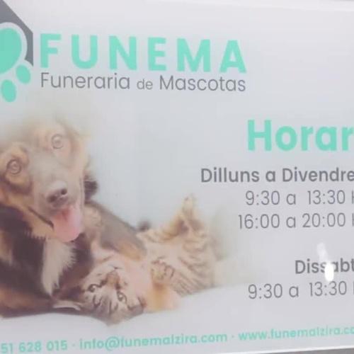 Tanatorio de mascotas en Ontinyent: Funema Alzira